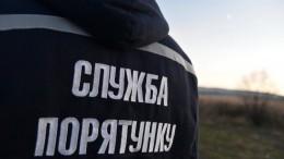 Пятеро украинцевнавоздушном шаре застряли вветвях дерева— опубликовано видео