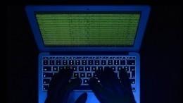 Хакеры нашли живодеров, сваривших котенка вкипятке