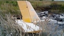 Возбуждено уголовное дело пофакту крушения самолета под Красноярском