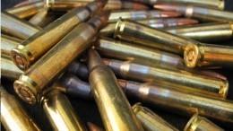 Небензя обвинил иностранные спецслужбы впоставках оружия ИГ*