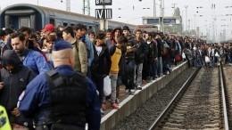 Из-за украинцев Чехия отказалась принимать новых беженцев имигрантов