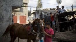 ВООН разочарованы решением США прекратить финансирование палестинских беженцев