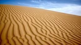 Ученые придумали, как вновь сделать пустыню Сахару зеленым райским уголком Земли