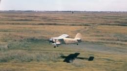 Пилот погиб при крушении сельскохозяйственного самолета вУльяновской области