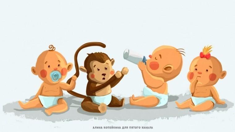 Младенцы ишимпанзе пользуются одним языком жестов