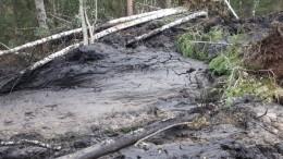 Гигантский грязевой оползень наступает наюжноуральский город