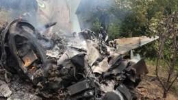 Два истребителя столкнулись внебе над Нигерией —видео сместа катастрофы
