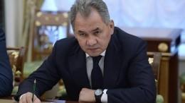 Шойгу отчитался перед Путиным обуспешной поставке С-300 вСирию