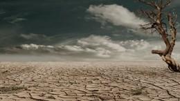 Ученые предупредили омногомиллионных жертвах глобальной засухи