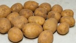 Нароссийских прилавках выявлен токсичный картофель