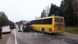 Видео сместа ДТП савтобусом имаршруткой вТверской области, где погибли более 10 человек