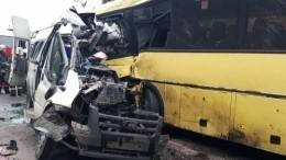 После ДТП с13 погибшими втранспортной компании прошли обыски