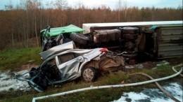 Трое погибли встрашном ДТП сгрузовиком вВологодской области— фото сместа