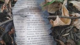 Перед нападением наколледж вКерчи Росляков предположительно сжег Библию