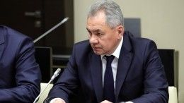 Министр обороны РФназвал итоги трех лет военной операции вСирии