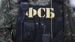 ВФСБ РФзаявили озадержании планировавших теракты вМоскве шести членов ИГ*