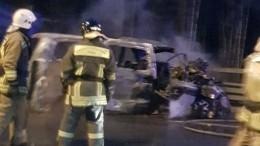 Неменее пяти человек погибли встрашной аварии наЗСД вПетербурге— видео