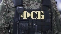 ВФСБ рассказали опланах разоблаченной вТатарстане ячейки ИГ*