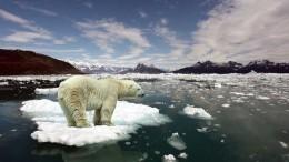 Ученый рассказал, как изменится жизнь россиян после глобального потепления