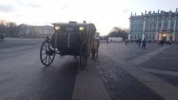 ДТП года: Вцентре Петербурга велосипедист попал под колеса кареты
