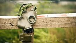 13ноября— День войск радиационной, химической ибиологической защиты