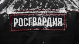 Депутат Госдумы объяснил важность централизованной охраны школ Росгвардией