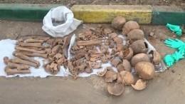 Пять черепов икости откопали рабочие вцентре Москвы— видео