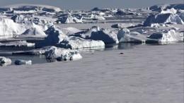 ВАнтарктике нашли остатки древних материков