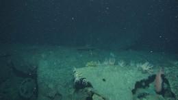 Появились первые фото затонувшей вАргентине субмарины «Сан-Хуан»