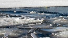 Спасение провалившегося под лед ребенка под Вологдой попало навидео