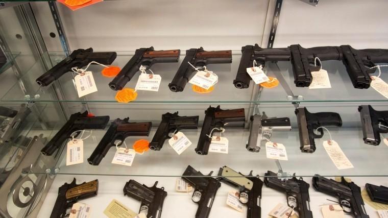 «Законна иразумна»— эксперт обинициативе Яровой оповышении возраста получения оружия