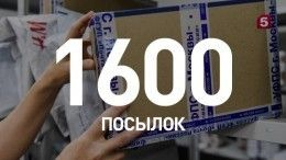 Двое сотрудников «Почты России» наворовали посылок на7 миллионов рублей