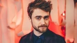 Магия вне Хогвартса: звезда «Гарри Поттера» остался незамеченным вмузее США