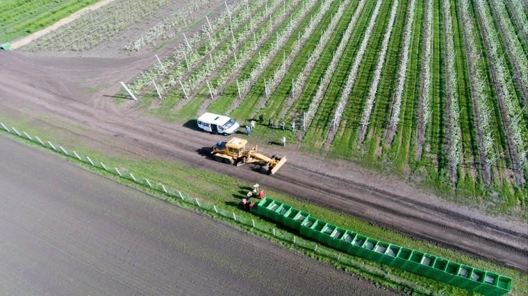 Эксперт подвел итоги сельскохозяйственного года вРФ