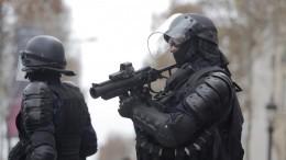Анархия по-французски: «желтые жилеты» вужасе отполицейских мер
