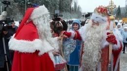 Дед Мороз иЙоулупукки встретились награнице России иФинляндии— видео