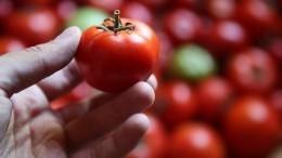 Лайфхак: как быстро очистить помидоры откожицы