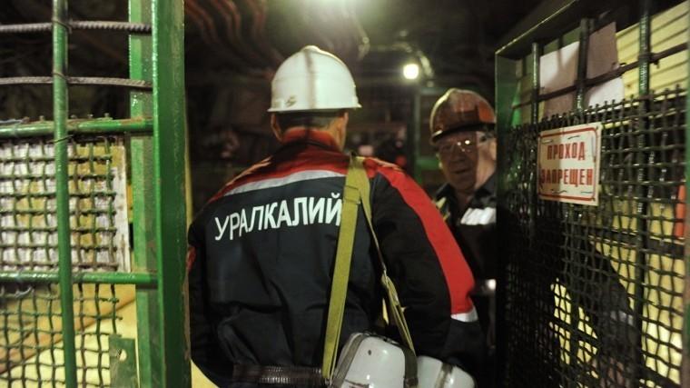 Сын владельца «Уралкалия» отжигает вклубе после трагедии вСоликамске— видео