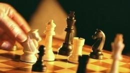 Петербург нанесколько дней стал шахматной столицей мира— видео