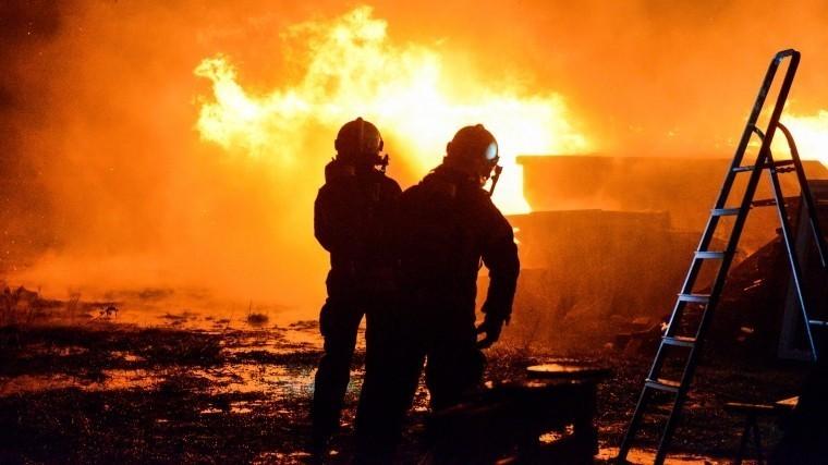ВРоссии запретили строительство напротивопожарных полосах