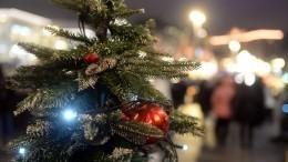 Пять лет дома! Как Крым встречает «юбилейный» Новый год