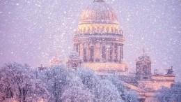 Туристы назвали Петербург лучшим городом для празднования Рождества