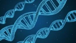 Ученого, впервые вистории изменившего ДНК эмбриона человека, могут казнить