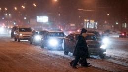 Погодные аномалии: из-за снегопада вМоскве отменены изадержаны более 45 рейсов