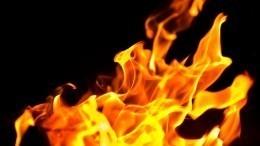 «Хорошо горит!»: Мажорки сожгли российский флаг ипохвастались этим вInstagram