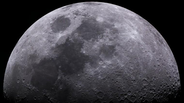 Космические грядки: Ученым впервые удалось прорастить хлопок наЛуне— фото