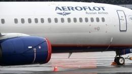 Бортпроводники рассказали осостоянии злоумышленника вовремя захвата самолета