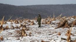 Беспилотники привлекли кочистке реки отзавалов вХабаровском крае