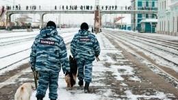 18февраля— День транспортной полиции