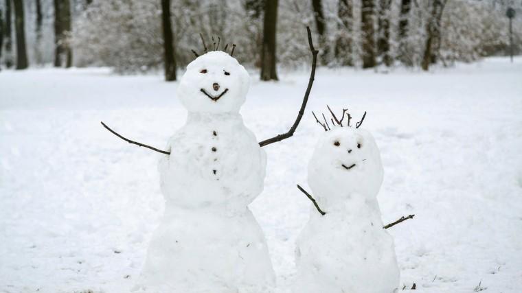 Самый мощный снегопад сезона придет вМоскву навыходных